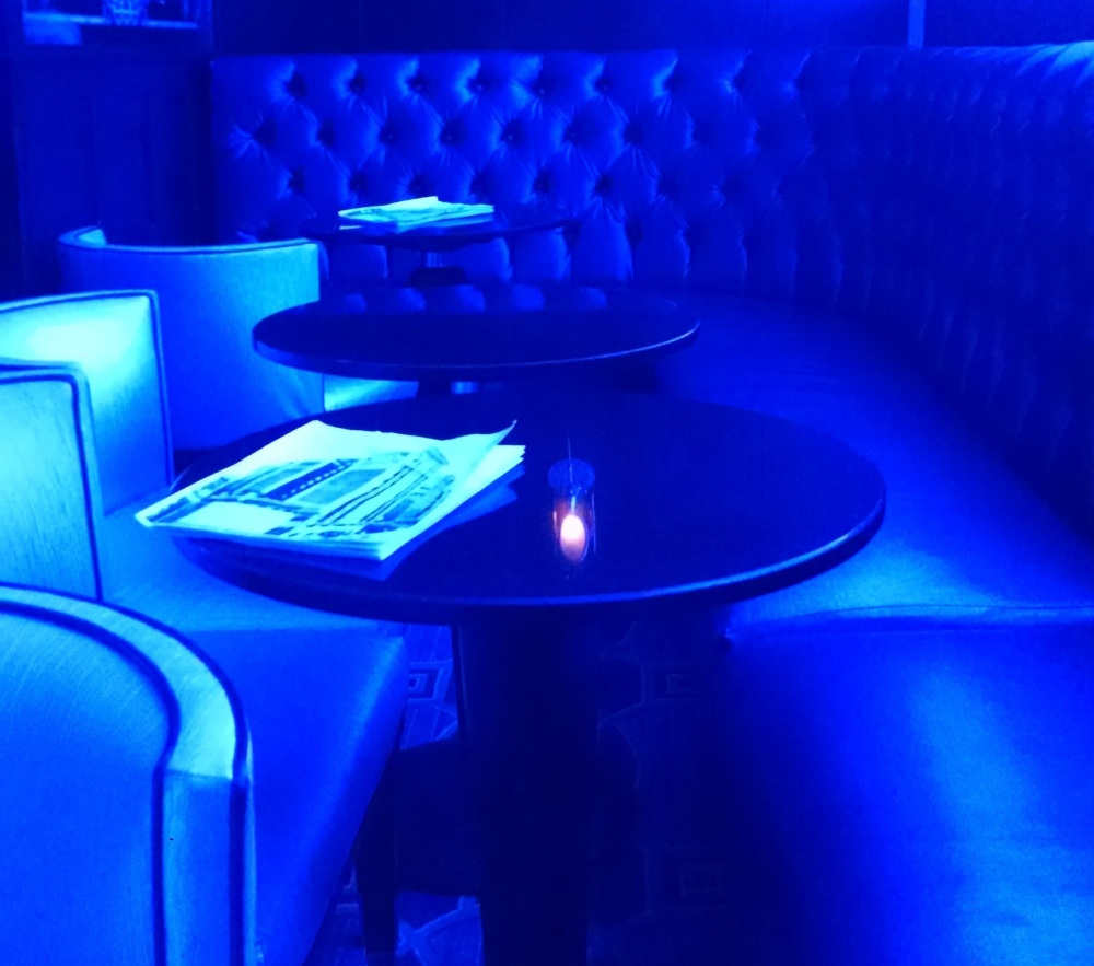 The Blue Bar at Algonquin