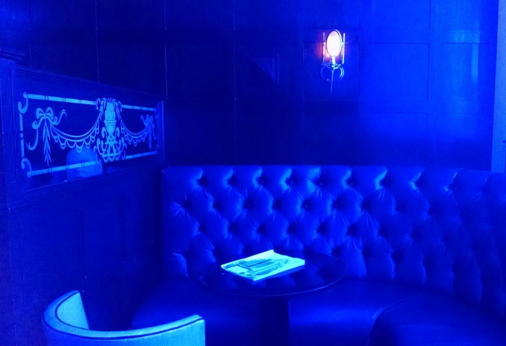 The Blue Bar at Algonquin 2