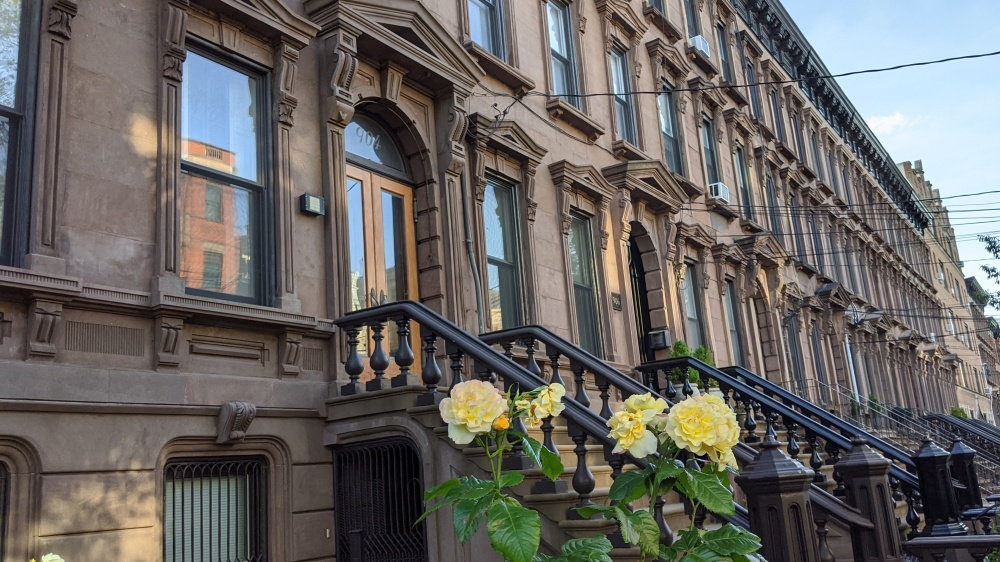 Uniform brownstone facades